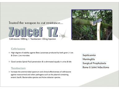 Zodcef- TZ 1125 - (Zodley Pharmaceuticals Pvt. Ltd.)