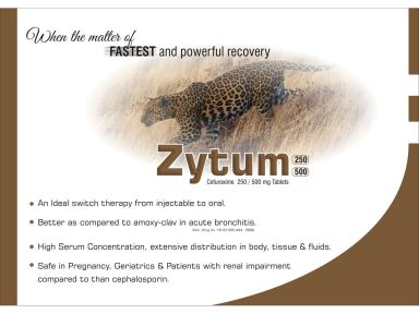Zytum-250 - (Zodley Pharmaceuticals Pvt. Ltd.)