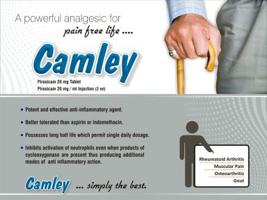 Camley (DT) - (Zodley Pharmaceuticals Pvt. Ltd.)